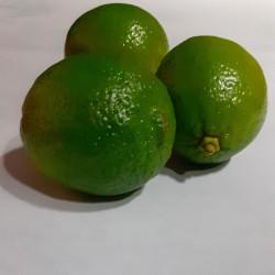 CITRONS lime Or.BresilC1, la pièce